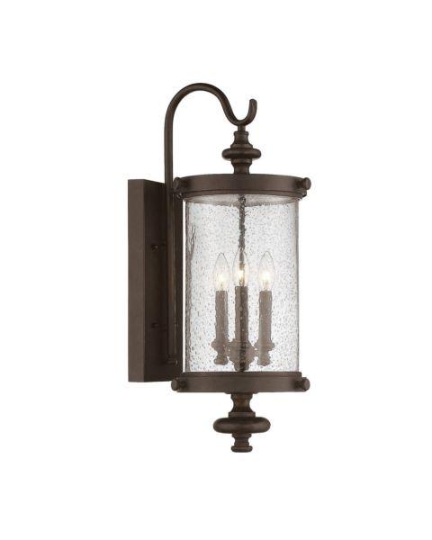 Palmer 3-Light Outdoor Wall Lantern